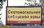 Сибирская язва: распространение, лечение и профилактика