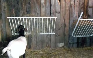 Составление рациона для коз по нормам кормления