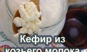 Кефир из козьего молока