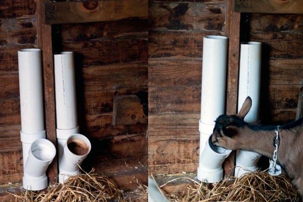 Витаминно-минеральная подкормка для коз